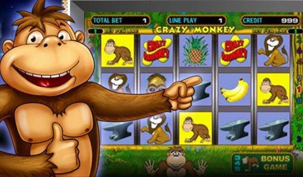 forum-crazy-monkey-sekreti