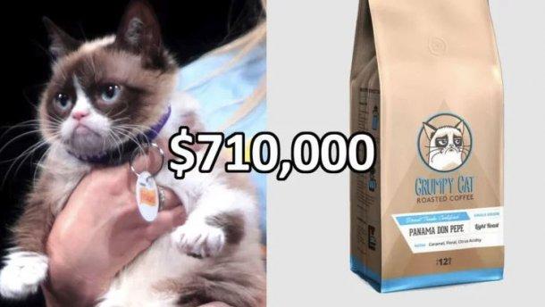 Владельцы самого злого кота выиграли судебный процесс