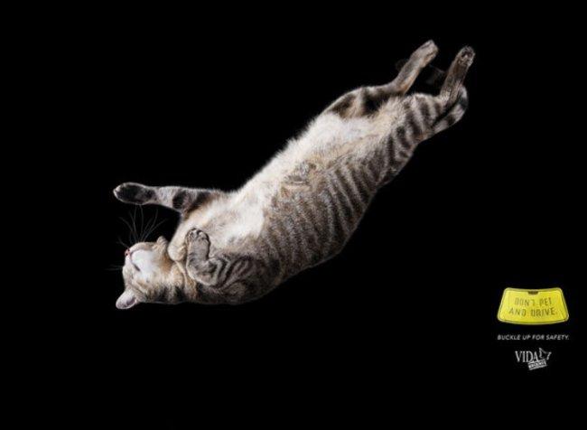 Рекламные принты для Vida Urgente призывают не сюсюкать за рулем